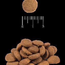 Сухой корм для активных и рабочих собак всех пород