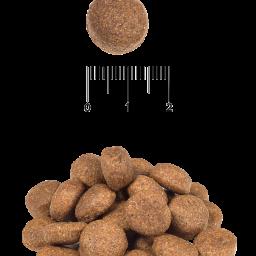 Сухой корм для взрослых собак крупных и гигантских пород