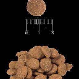 Сухой корм для взрослых собак всех пород с индейкой и ячменем