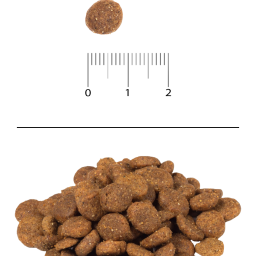 Сухой корм для щенков всех пород с ягнёнком и рисом