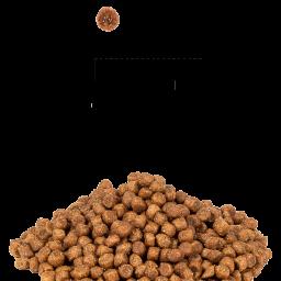 Сухой корм с индейкой для котят, беременных и кормящих кошек