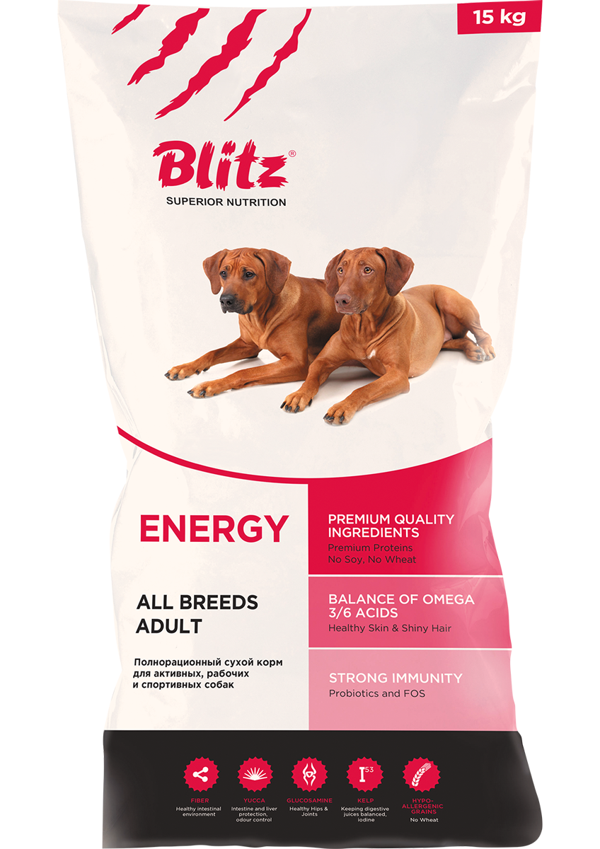 Adult-All-Breeds-Energy