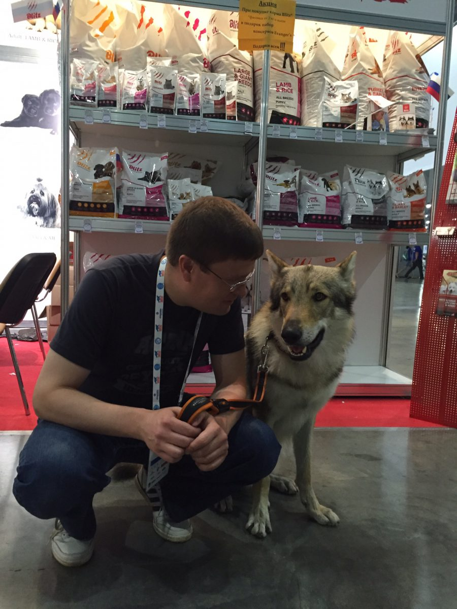 Стенд BLITZ на выставке собак