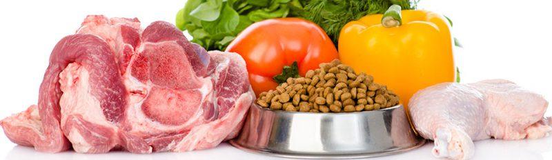 Чем кормить собаку в домашних условиях?