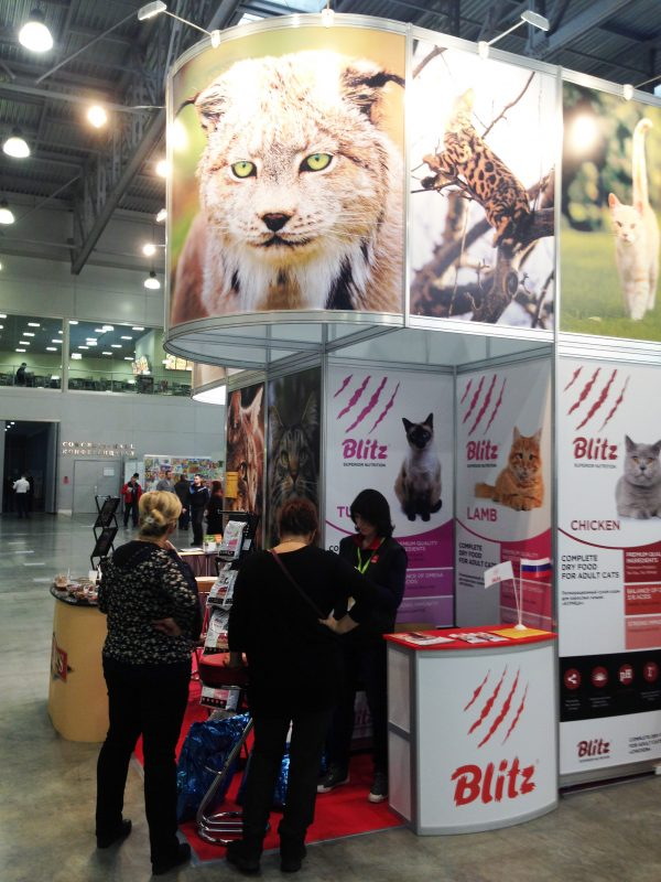 Blitz на выставке «Кэтсбург-2016» в Москве