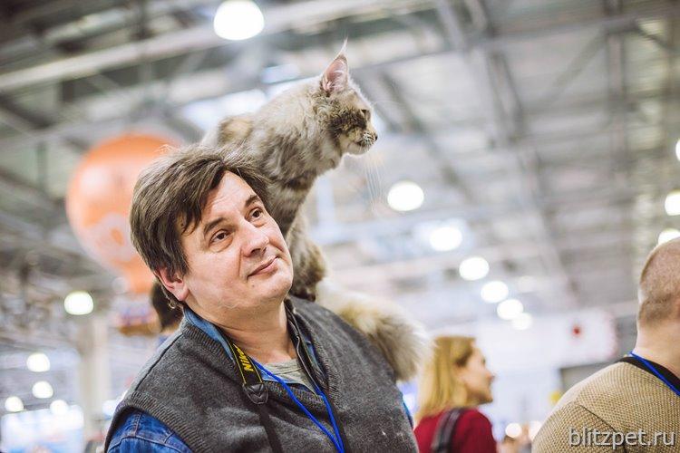 Международная выставка кошек Кэтсбург 2018