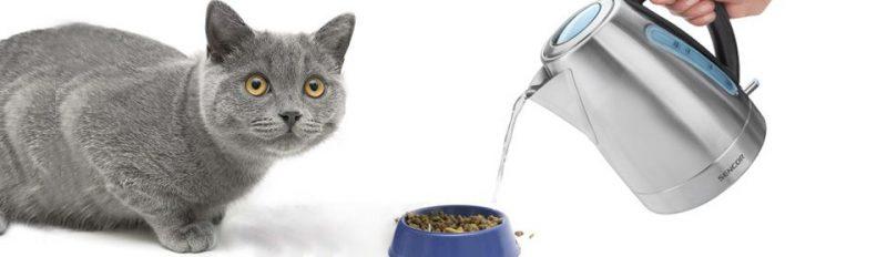 Нужно ли размачивать сухой корм?