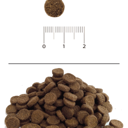 Blitz: сухой корм для взрослых кошек «Домашняя птица»