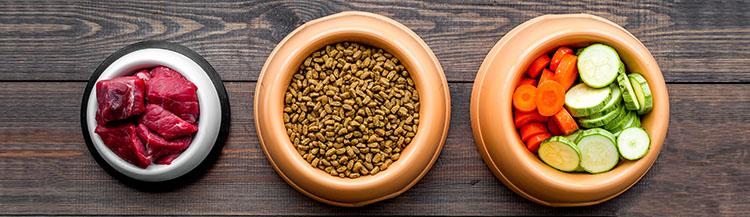 Можно ли чередовать натуральный и сухой корм