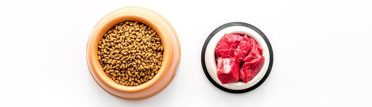 Можно ли смешивать сухой корм и мясо