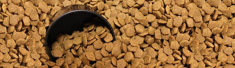50 грамм сухого корма — это сколько?