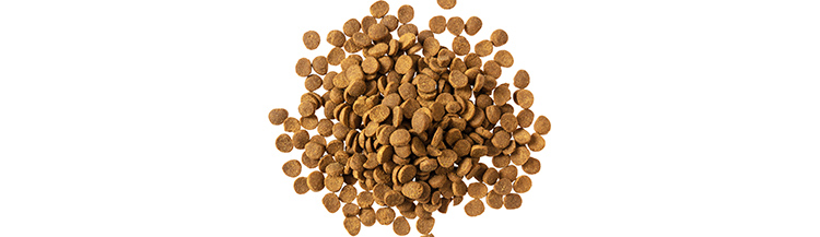 60 грамм сухого корма — это сколько?