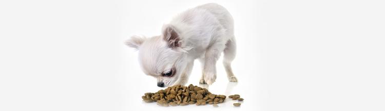 Сколько грамм сухого корма нужно давать щенку