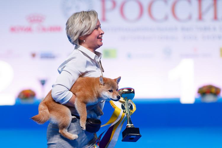 Отзывы о выставке собак Россия 2018