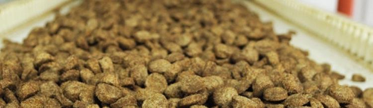 Производство сухих кормов для кошек