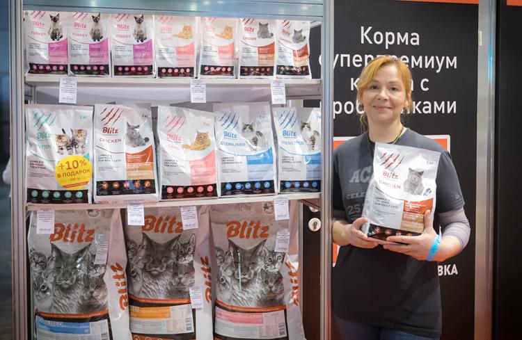 Blitz на международной выставке кошек Кэтсбург 2019