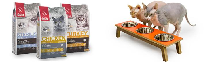 Каким должен быть хороший корм для кошек?