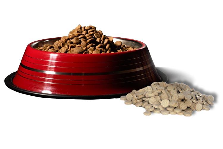 Можно ли сочетать сухой корм и витамины