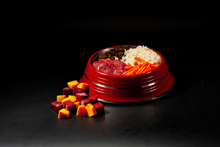 Можно ли сочетать сухой корм с обычной едой?