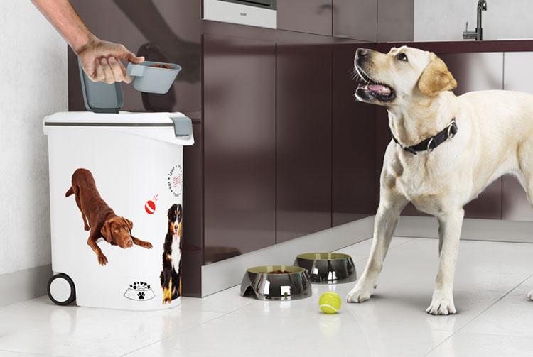 Как выбрать контейнер для сухого корма для собак?