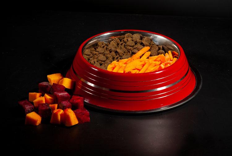 Можно ли смешивать сухой корм и овощи для собак?