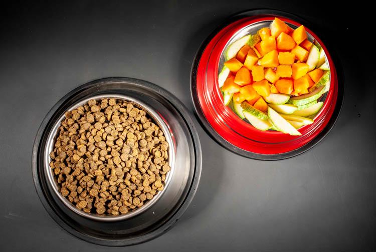 Почему не стоит совмещать овощи и сухой корм?