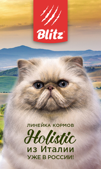 Линия кормов Blitz Holistic для кошек
