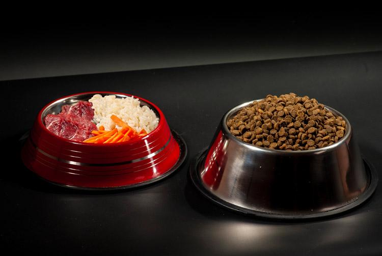 Cухой корм или натуральное питание — что лучше для собак и кошек