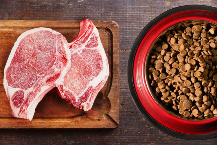 Мифы о свинине в рационе собаки