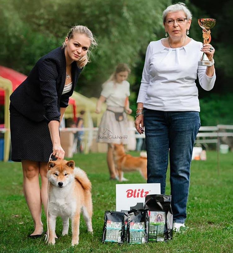 Lekkou Destiny Bombshell (с домашней кличкой Шелби) — лучшая взрослая собака