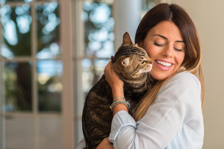 Питание кошки сухим кормом
