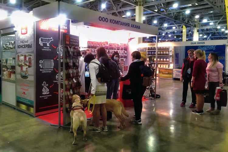 Blitz на выставке собак «Евразия-2021»