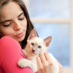 Каким рационом кормить котят до года?